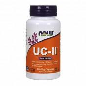 UC-II Colágeno Tipo 1 NOW (Saúde das Articulações)