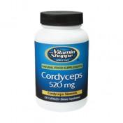 Cordyceps 520mg (Energia) Vitamin Shoppe
